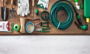 מוצרים לגינה בלאק פריידי